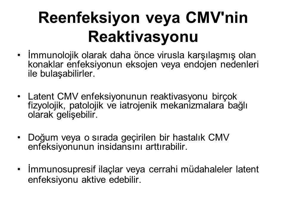 Reenfeksiyon veya CMV nin Reaktivasyonu