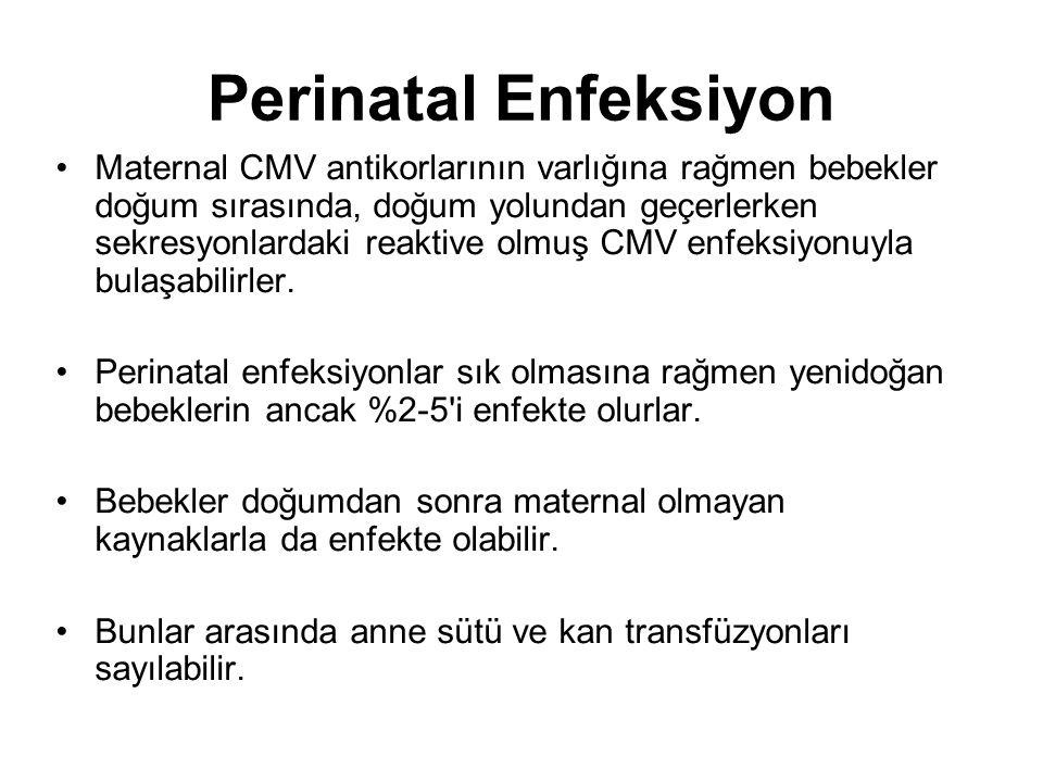 Perinatal Enfeksiyon
