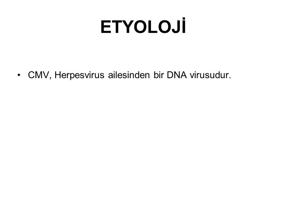 ETYOLOJİ CMV, Herpesvirus ailesinden bir DNA virusudur.