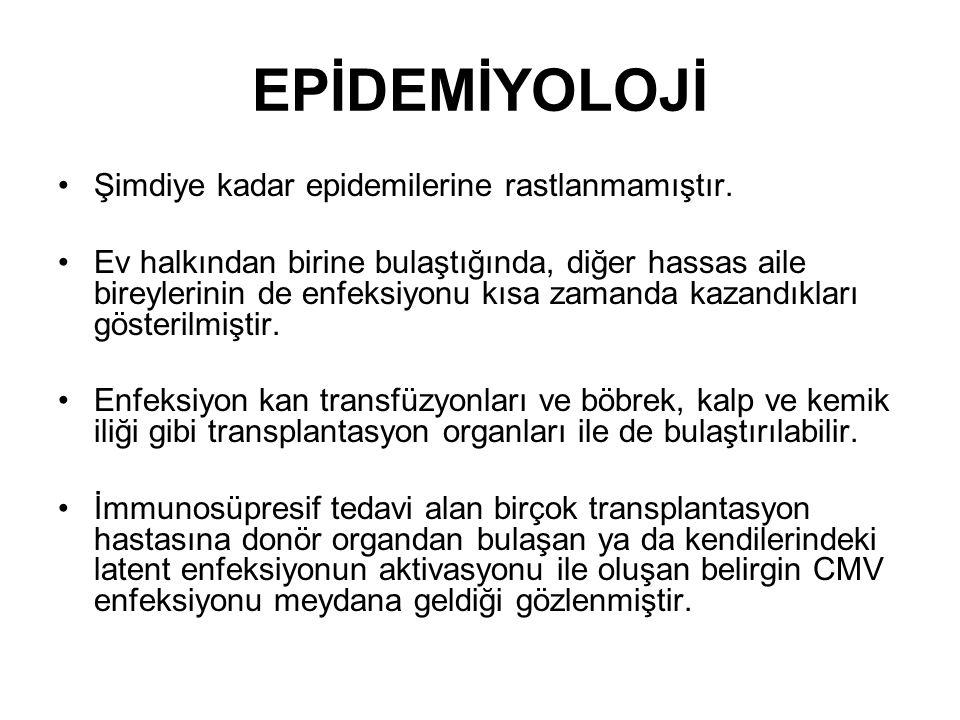 EPİDEMİYOLOJİ Şimdiye kadar epidemilerine rastlanmamıştır.