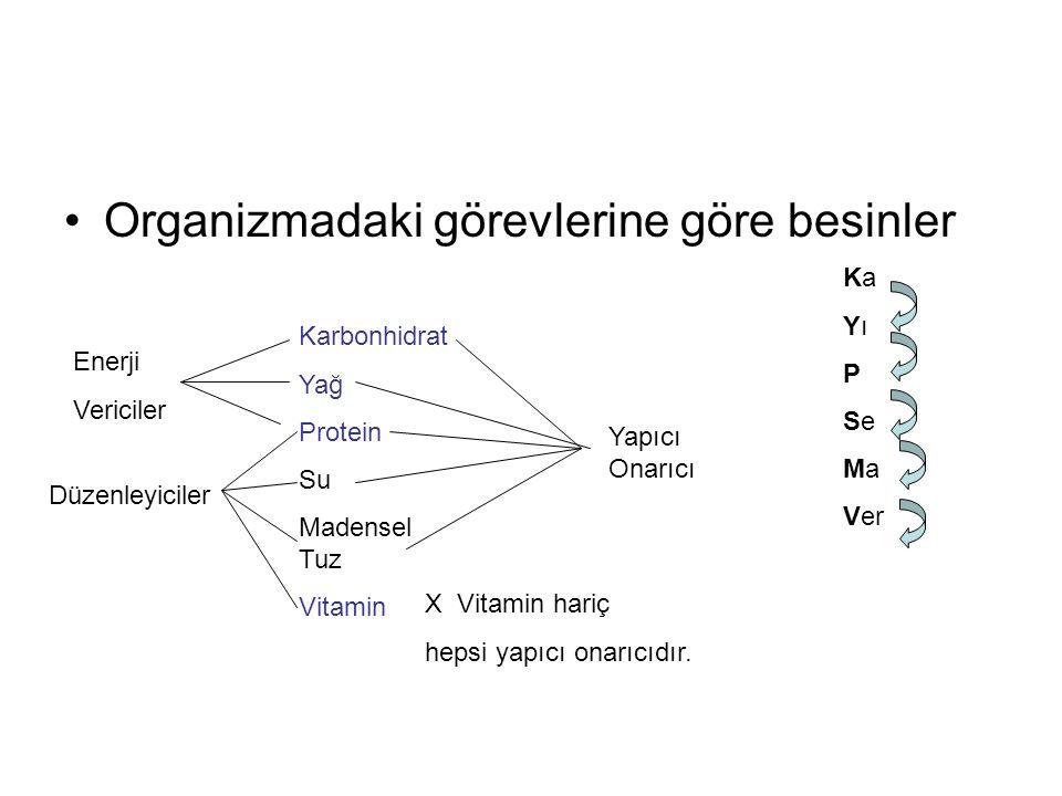 Organizmadaki görevlerine göre besinler