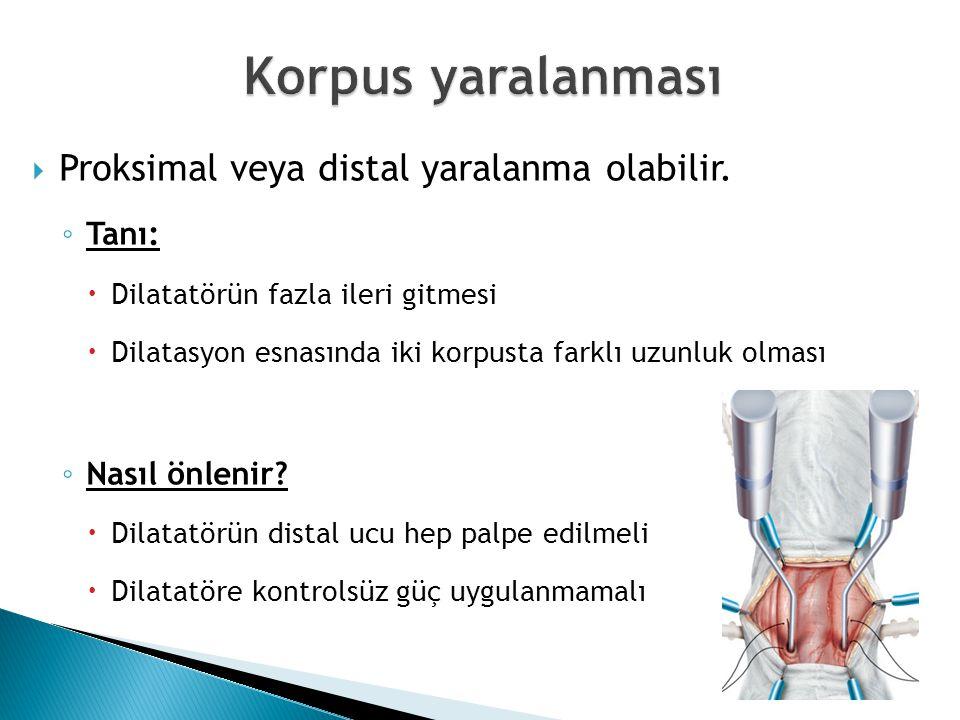Korpus yaralanması Proksimal veya distal yaralanma olabilir. Tanı: