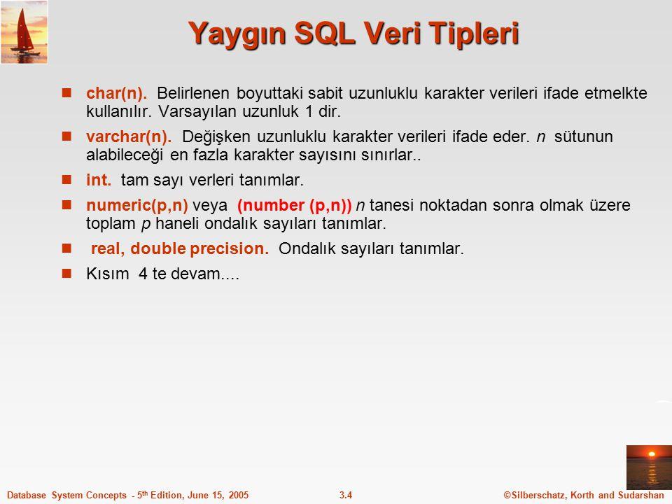 Yaygın SQL Veri Tipleri