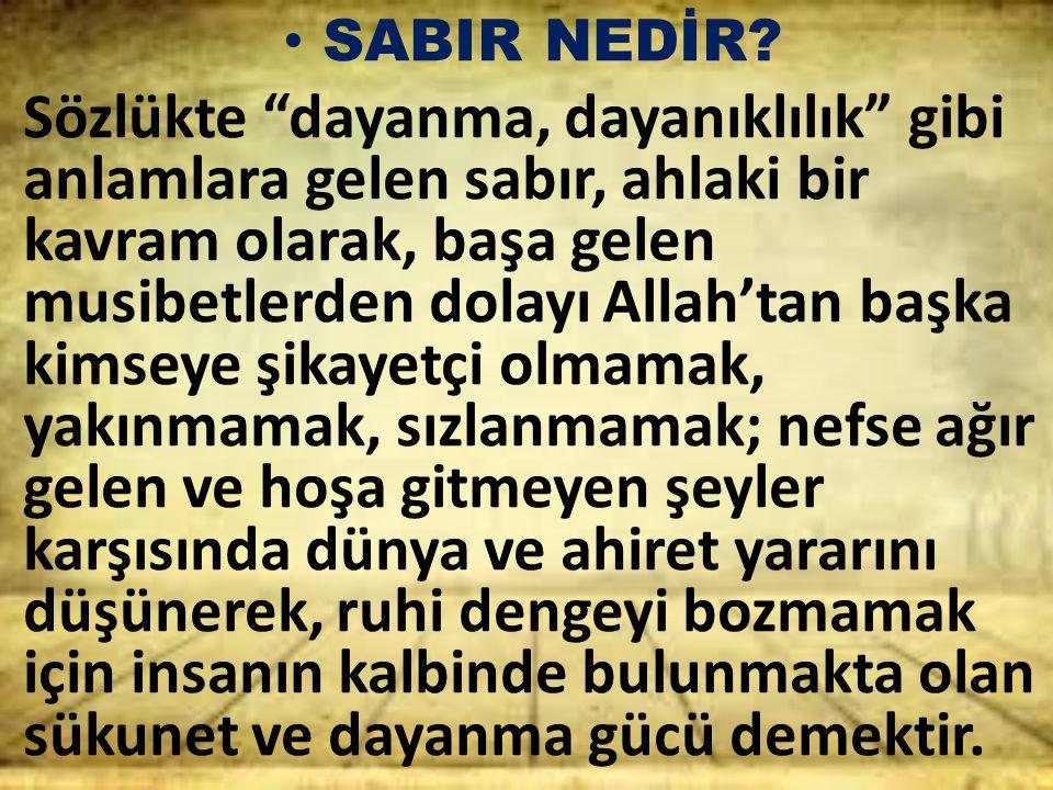 SABIR NEDİR
