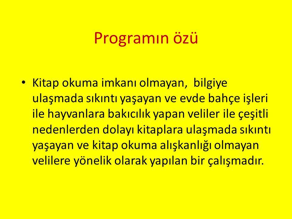 Programın özü
