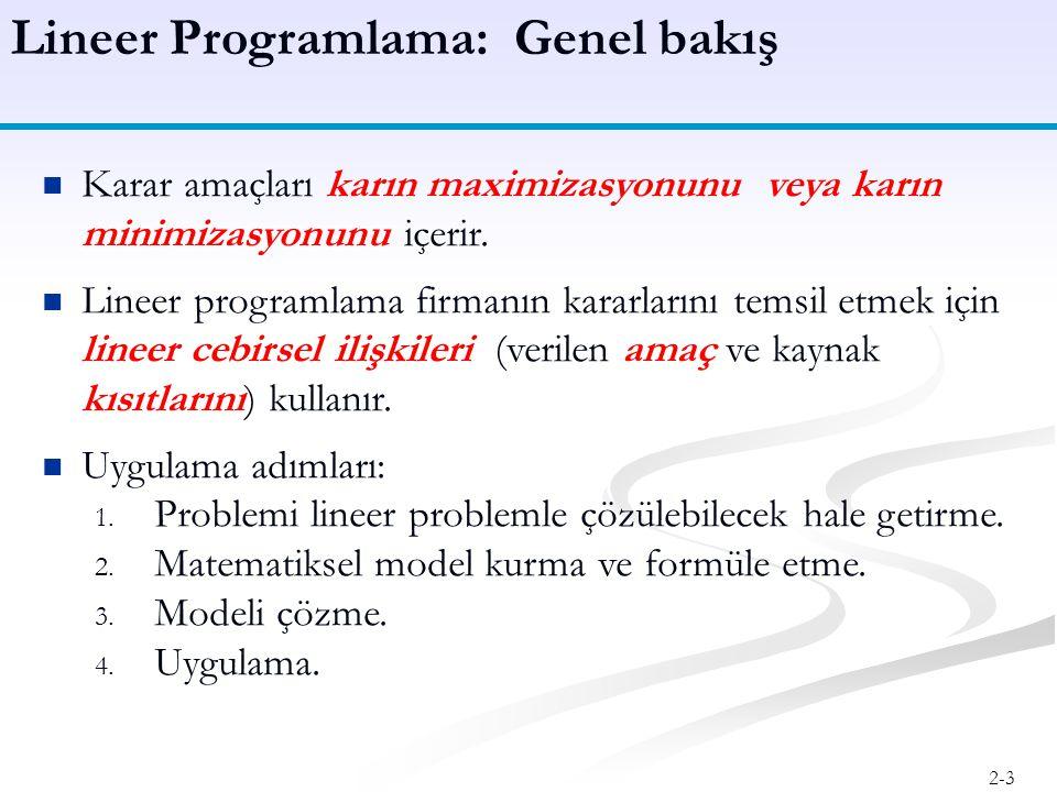Lineer Programlama: Genel bakış