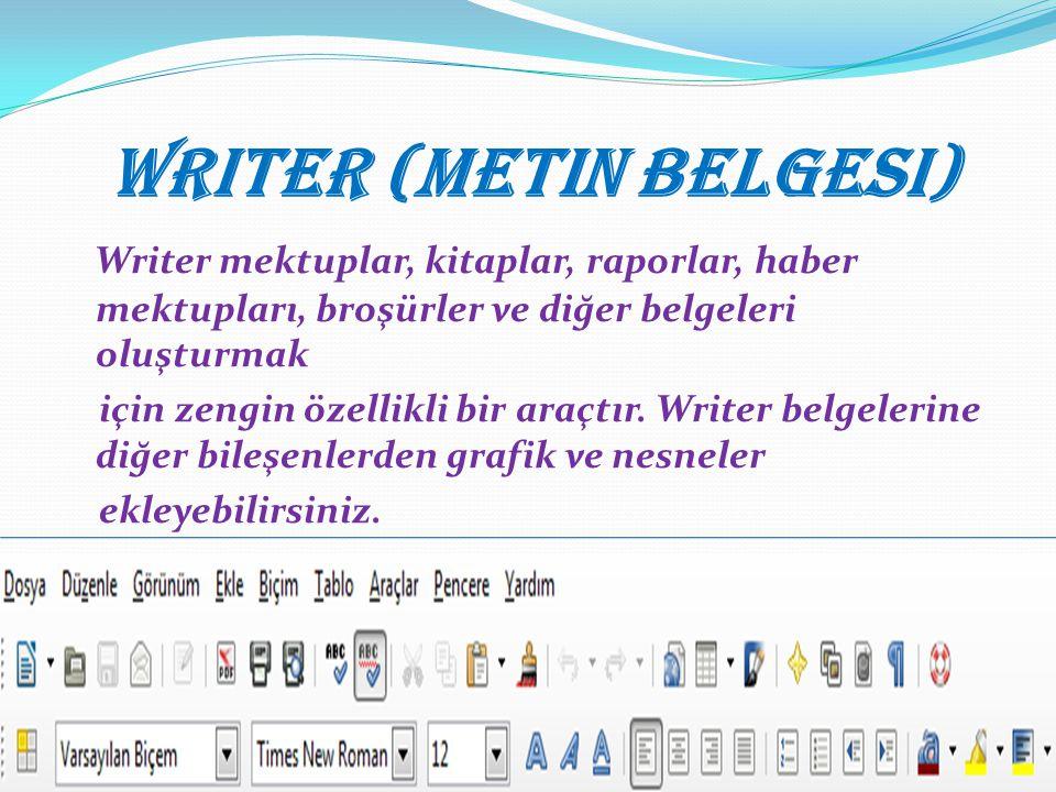 Writer (Metin Belgesi)