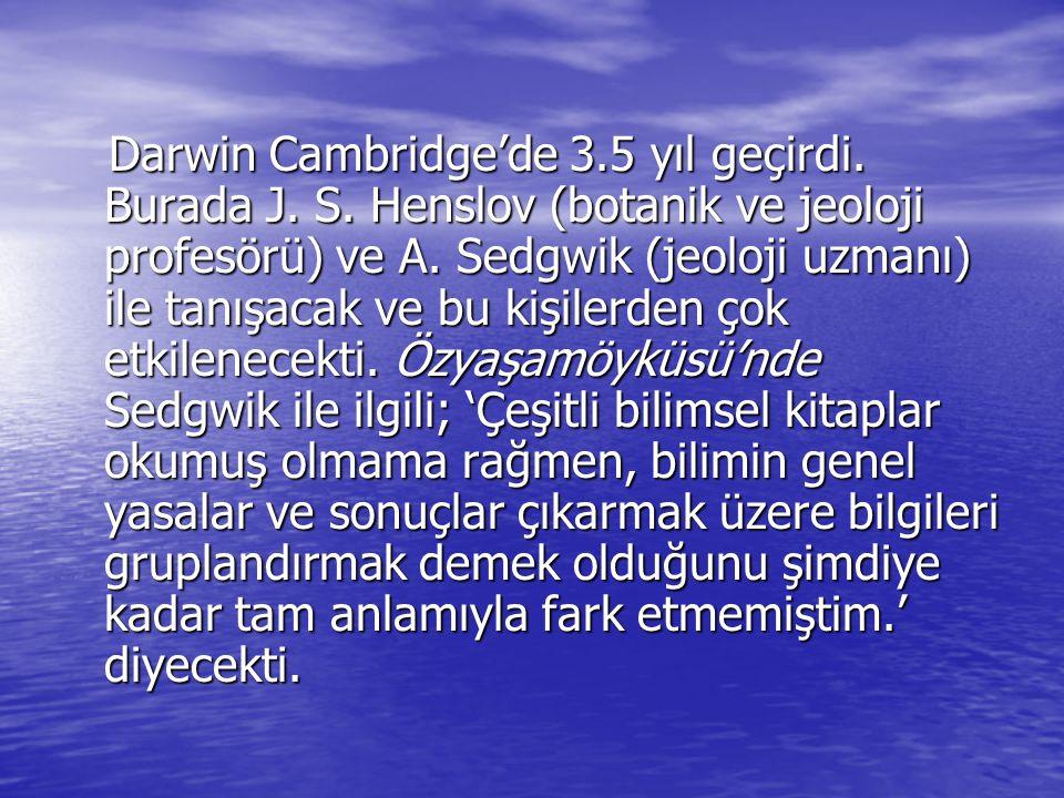 Darwin Cambridge'de 3. 5 yıl geçirdi. Burada J. S