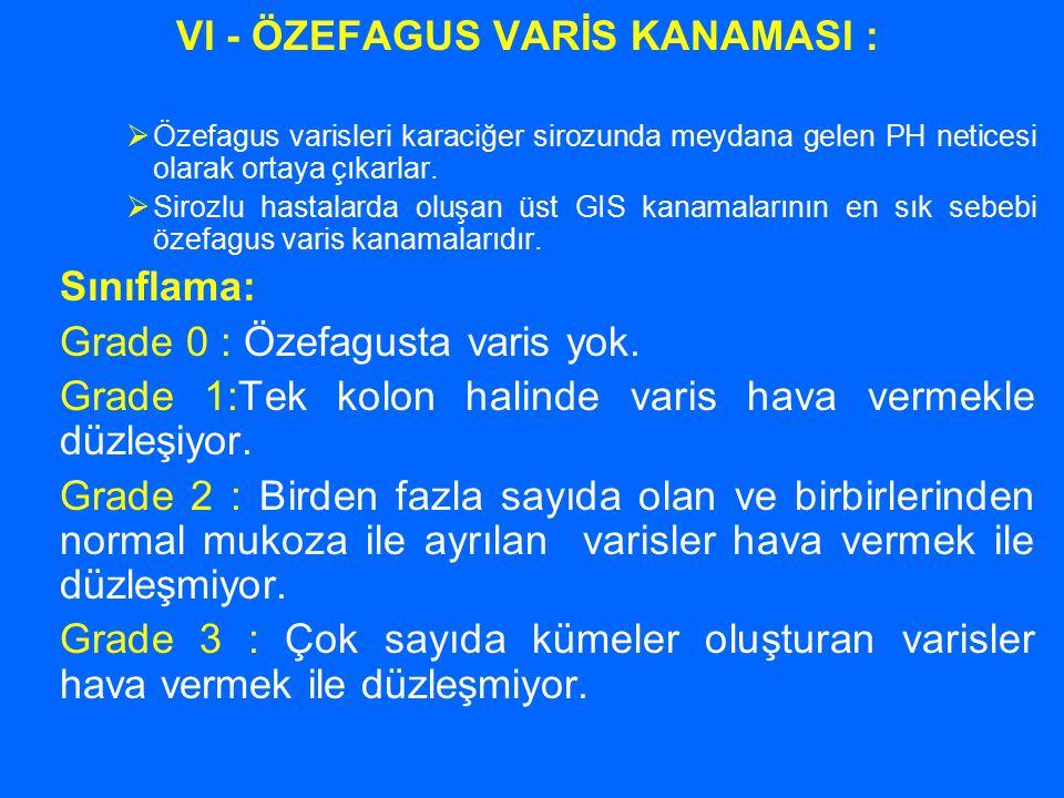 VI - ÖZEFAGUS VARİS KANAMASI :