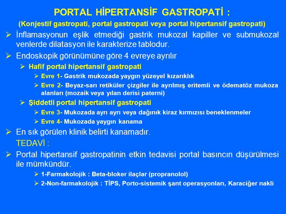 PORTAL HİPERTANSİF GASTROPATİ :