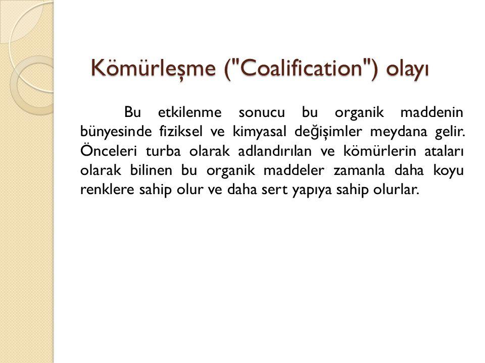 Kömürleşme ( Coalification ) olayı