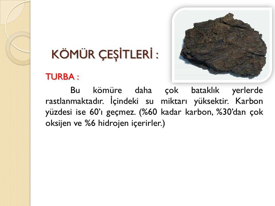 TURBA : Bu kömüre daha çok bataklık yerlerde rastlanmaktadır
