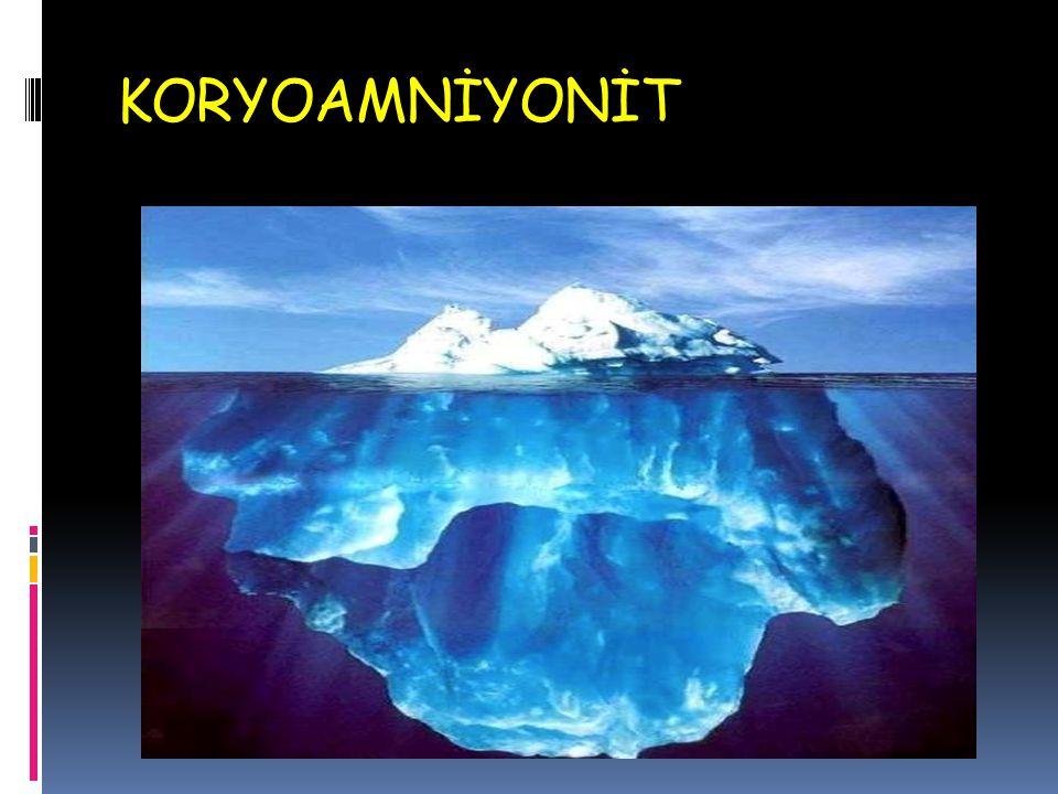 KORYOAMNİYONİT