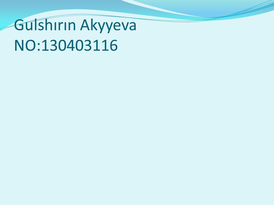 Gulshırın Akyyeva NO:130403116