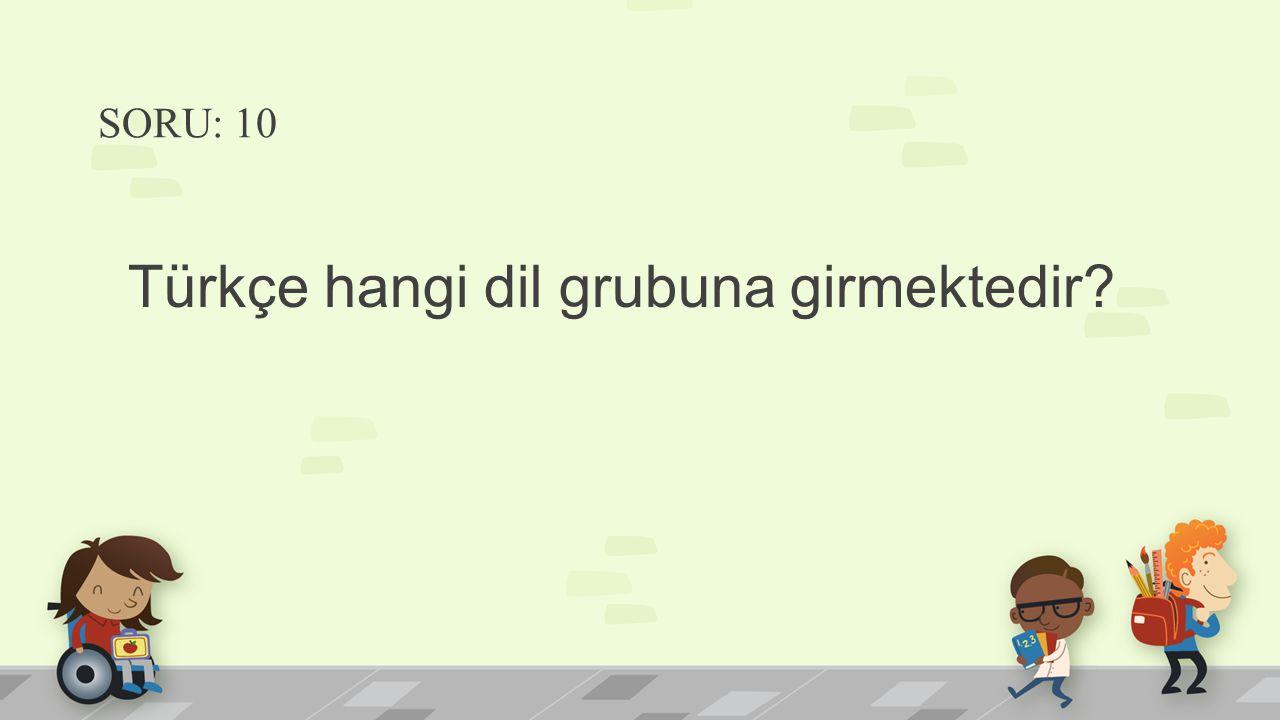 Türkçe hangi dil grubuna girmektedir