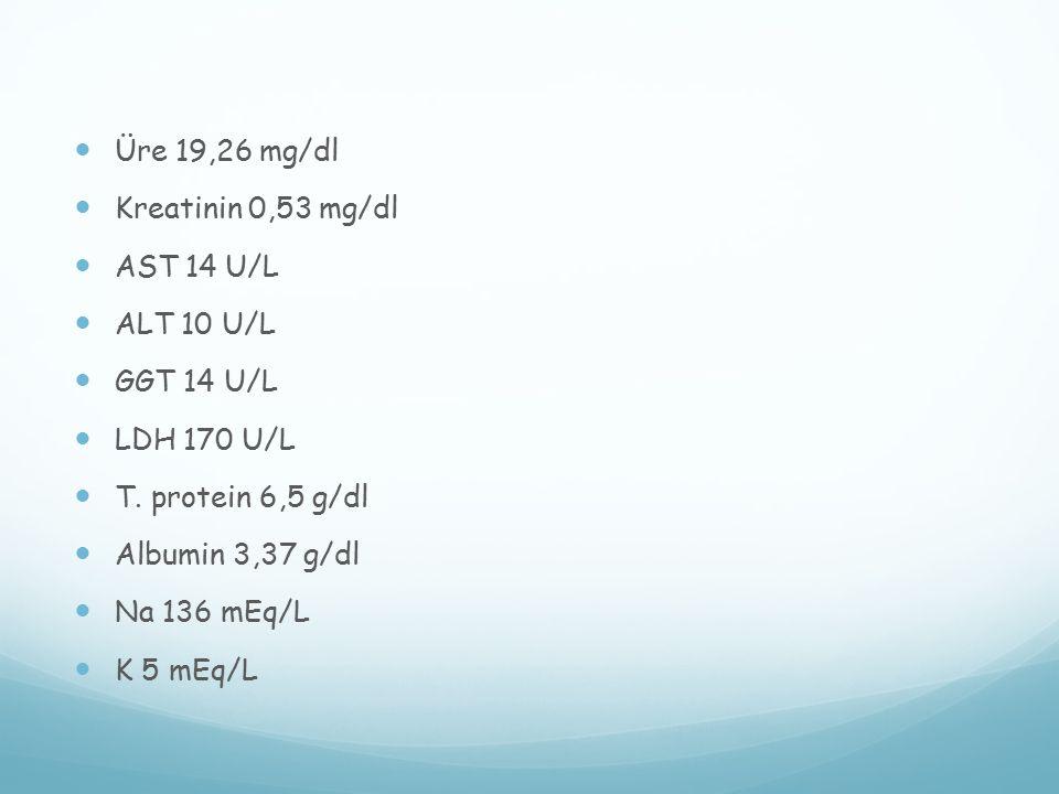 Üre 19,26 mg/dl Kreatinin 0,53 mg/dl. AST 14 U/L. ALT 10 U/L. GGT 14 U/L. LDH 170 U/L. T. protein 6,5 g/dl.