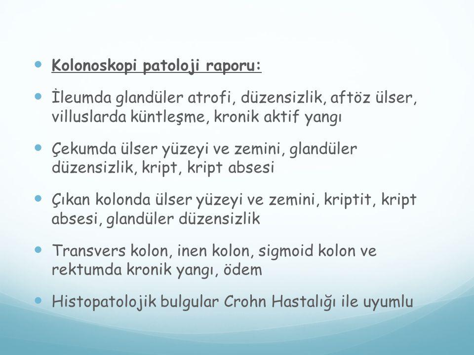 Kolonoskopi patoloji raporu: