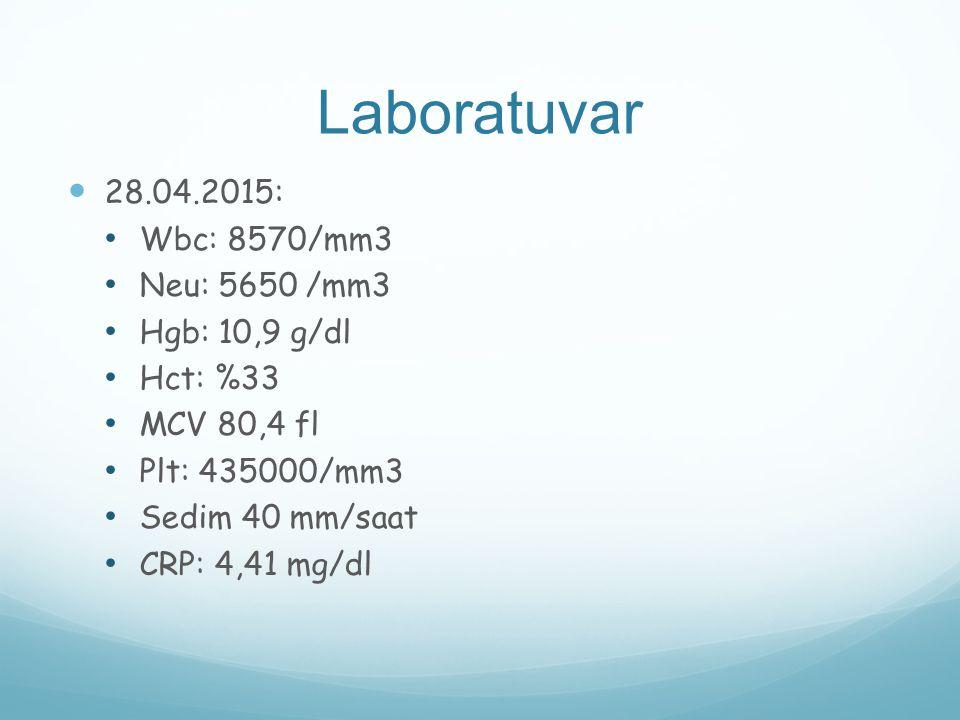 Laboratuvar 28.04.2015: Wbc: 8570/mm3 Neu: 5650 /mm3 Hgb: 10,9 g/dl
