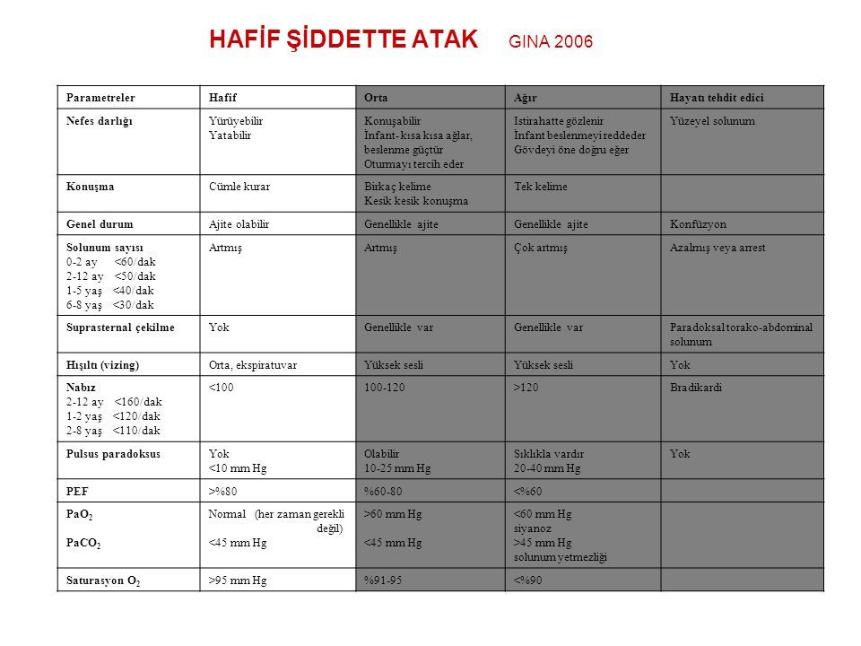 HAFİF ŞİDDETTE ATAK GINA 2006