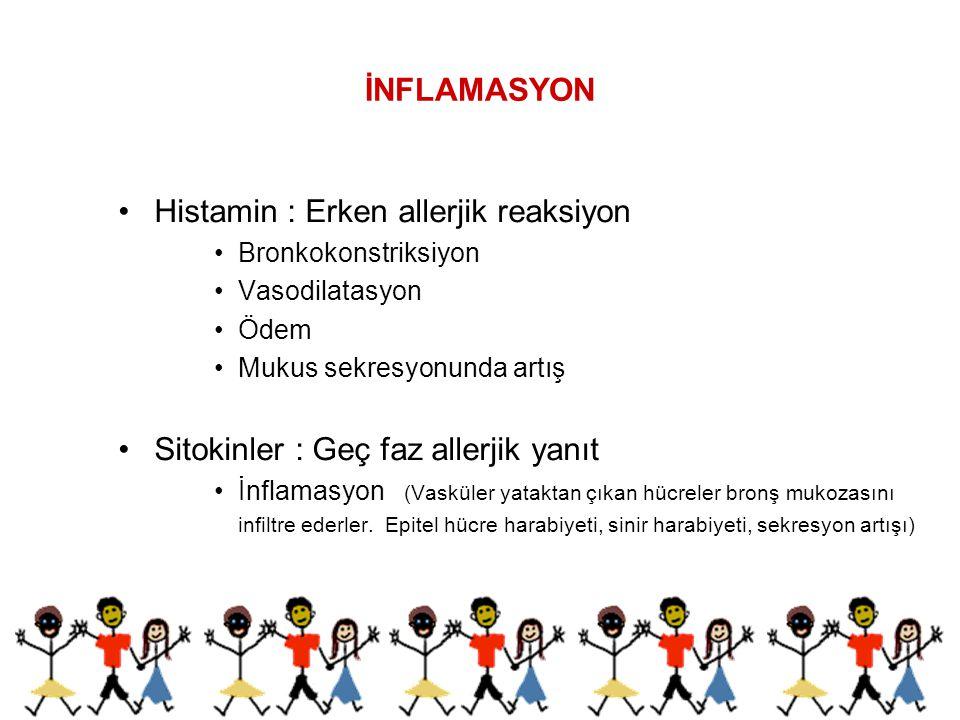 Histamin : Erken allerjik reaksiyon