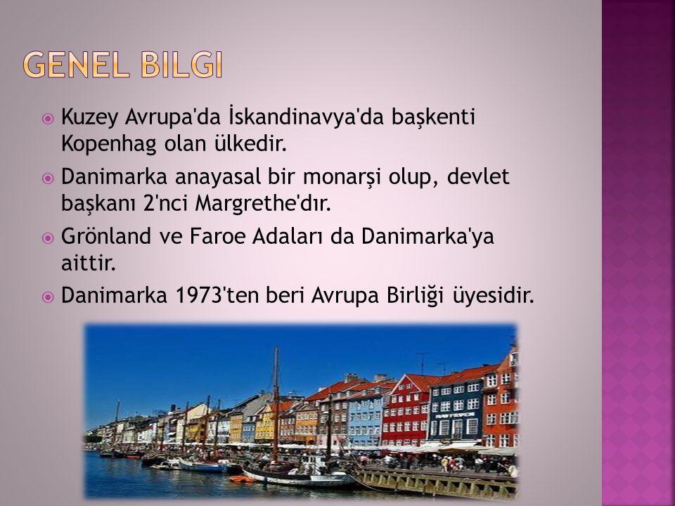 Genel bilgi Kuzey Avrupa da İskandinavya da başkenti Kopenhag olan ülkedir.