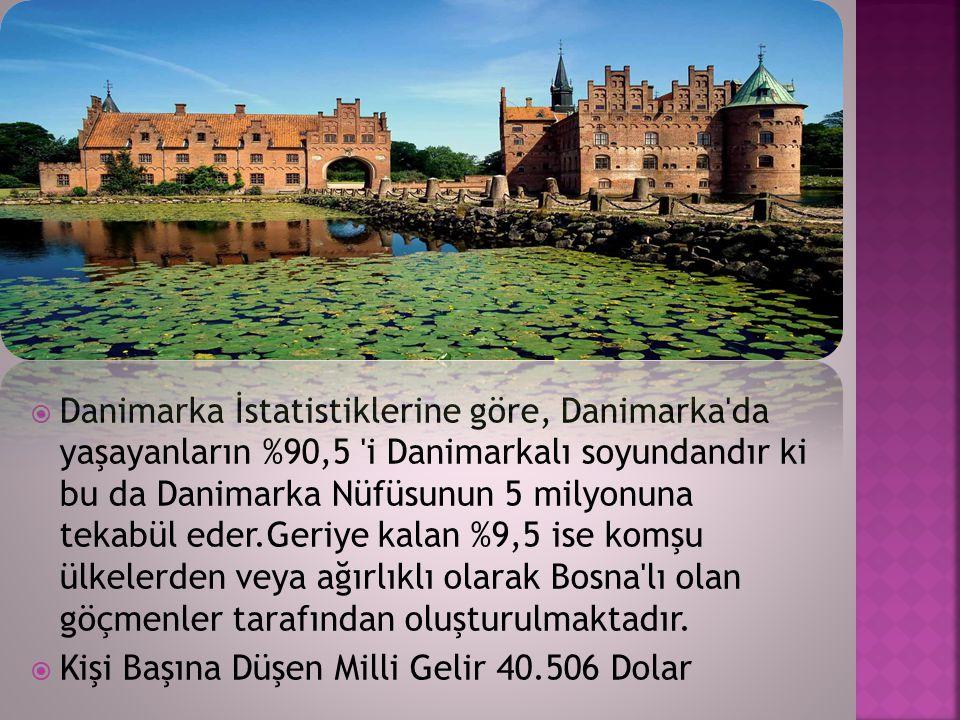 Danimarka İstatistiklerine göre, Danimarka da yaşayanların %90,5 i Danimarkalı soyundandır ki bu da Danimarka Nüfüsunun 5 milyonuna tekabül eder.Geriye kalan %9,5 ise komşu ülkelerden veya ağırlıklı olarak Bosna lı olan göçmenler tarafından oluşturulmaktadır.