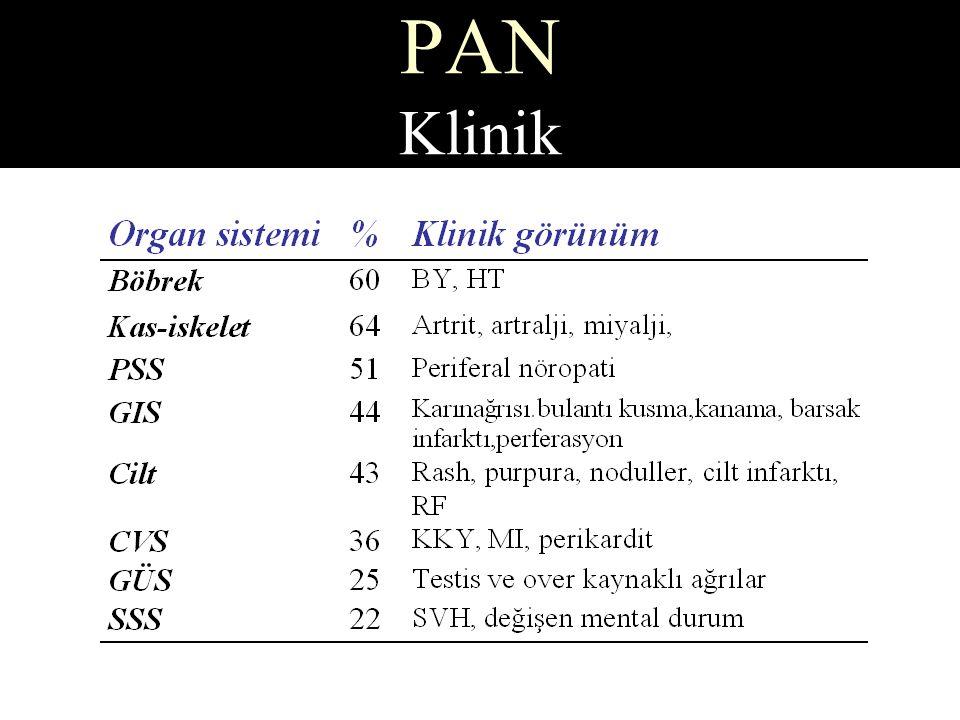 PAN Klinik