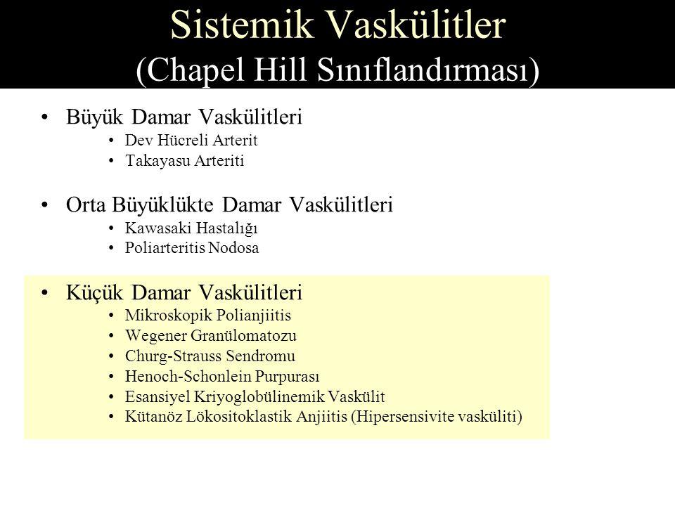 Sistemik Vaskülitler (Chapel Hill Sınıflandırması)