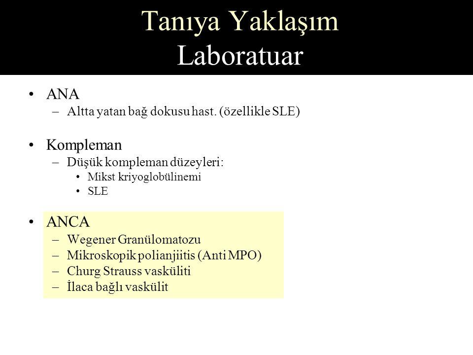 Tanıya Yaklaşım Laboratuar