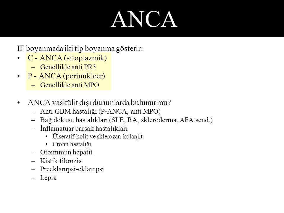 ANCA IF boyanmada iki tip boyanma gösterir: C - ANCA (sitoplazmik)