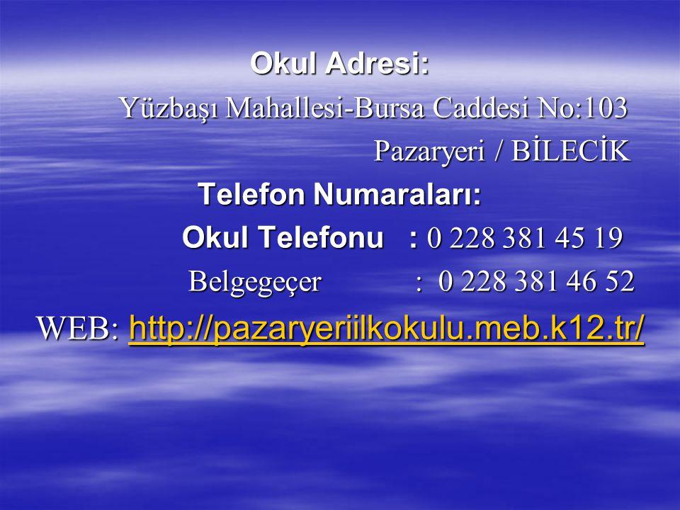 WEB: http://pazaryeriilkokulu.meb.k12.tr/