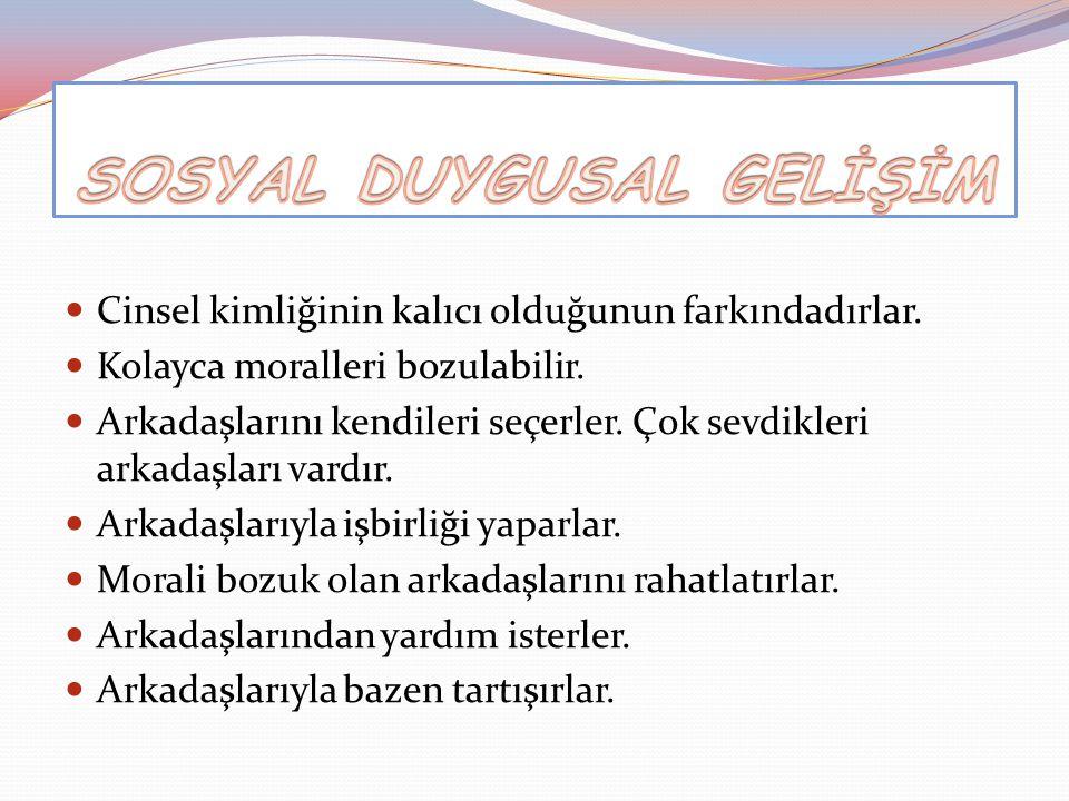 SOSYAL DUYGUSAL GELİŞİM