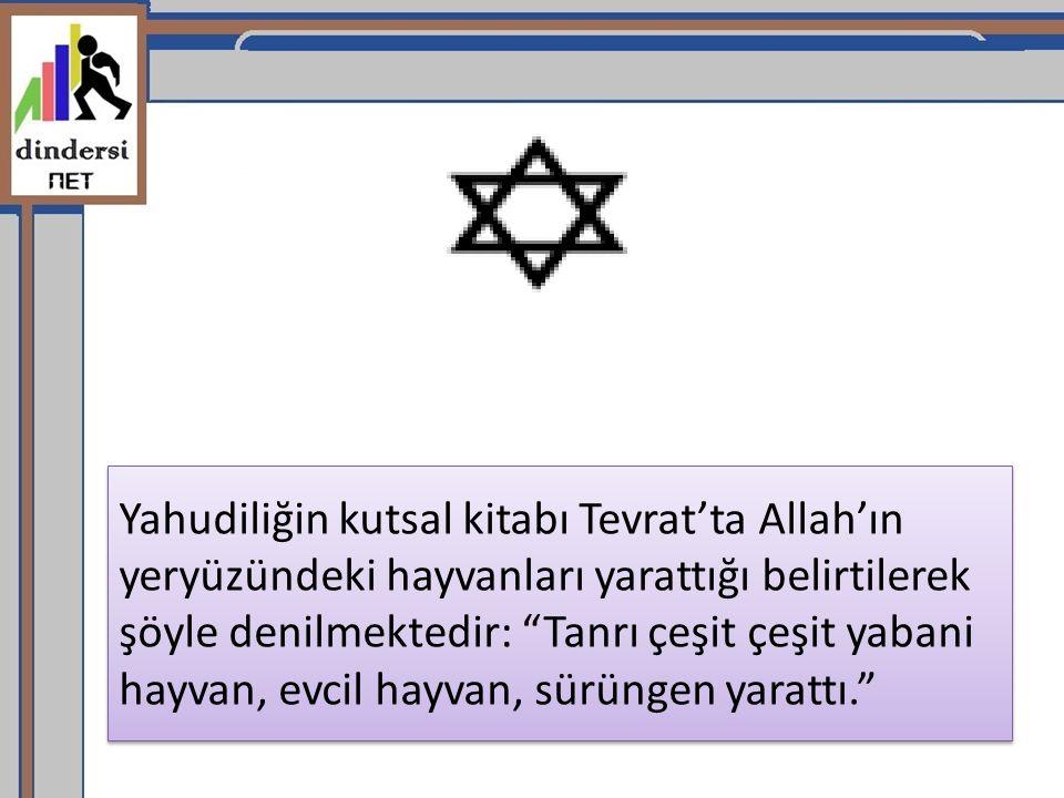 Yahudiliğin kutsal kitabı Tevrat'ta Allah'ın yeryüzündeki hayvanları yarattığı belirtilerek şöyle denilmektedir: Tanrı çeşit çeşit yabani hayvan, evcil hayvan, sürüngen yarattı.