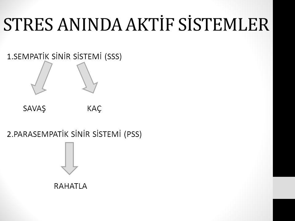 STRES ANINDA AKTİF SİSTEMLER