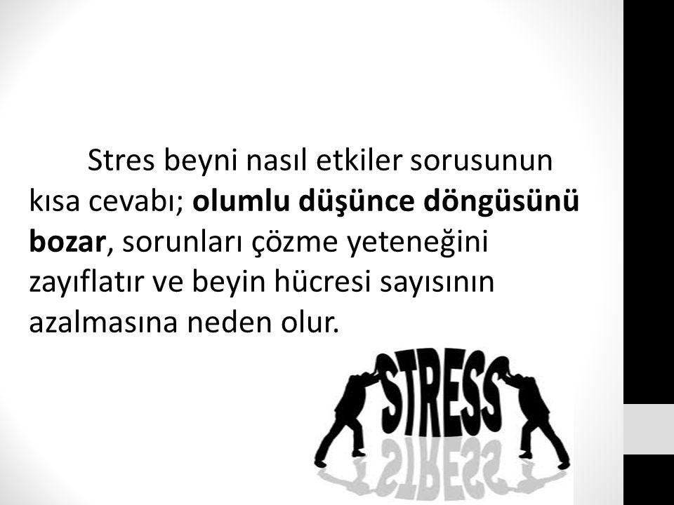 Stres beyni nasıl etkiler sorusunun kısa cevabı; olumlu düşünce döngüsünü bozar, sorunları çözme yeteneğini zayıflatır ve beyin hücresi sayısının azalmasına neden olur.