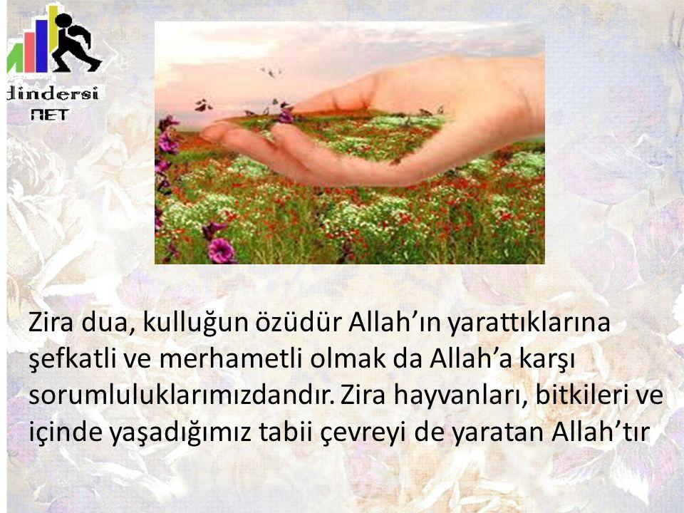 Zira dua, kulluğun özüdür Allah'ın yarattıklarına şefkatli ve merhametli olmak da Allah'a karşı sorumluluklarımızdandır.