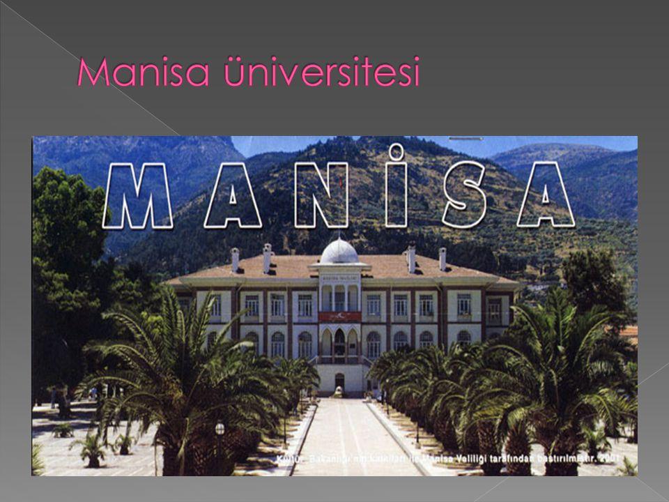 Manisa üniversitesi