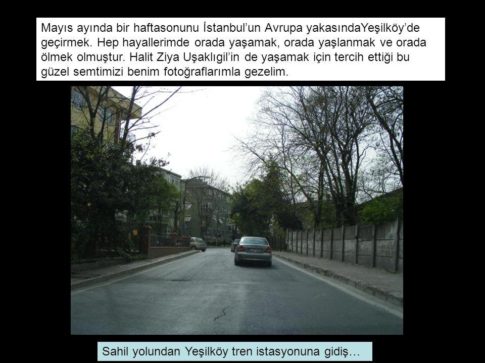 Mayıs ayında bir haftasonunu İstanbul'un Avrupa yakasındaYeşilköy'de geçirmek. Hep hayallerimde orada yaşamak, orada yaşlanmak ve orada ölmek olmuştur. Halit Ziya Uşaklıgil'in de yaşamak için tercih ettiği bu güzel semtimizi benim fotoğraflarımla gezelim.