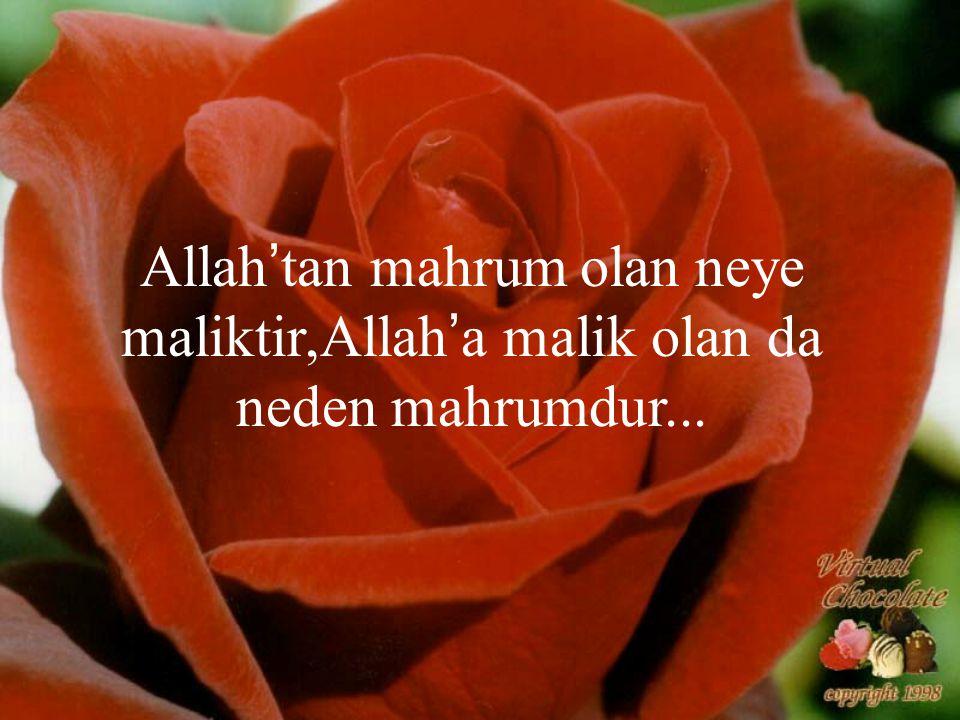 Allah'tan mahrum olan neye maliktir,Allah'a malik olan da neden mahrumdur...