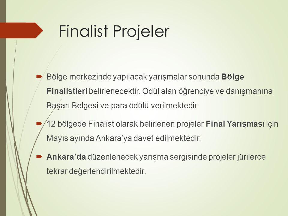 Finalist Projeler