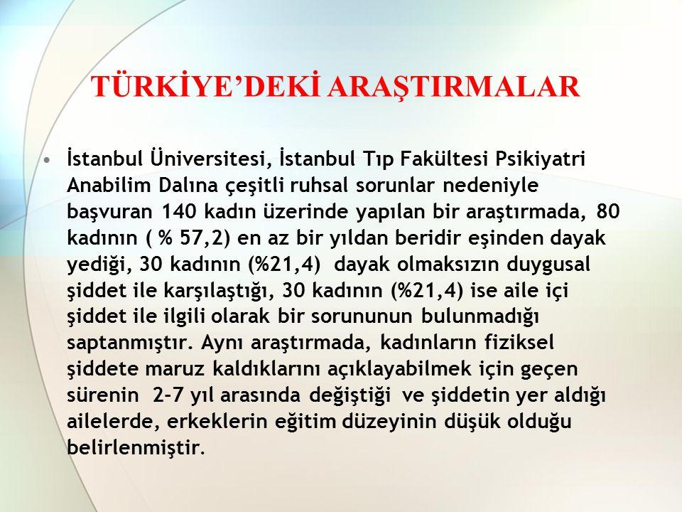 TÜRKİYE'DEKİ ARAŞTIRMALAR