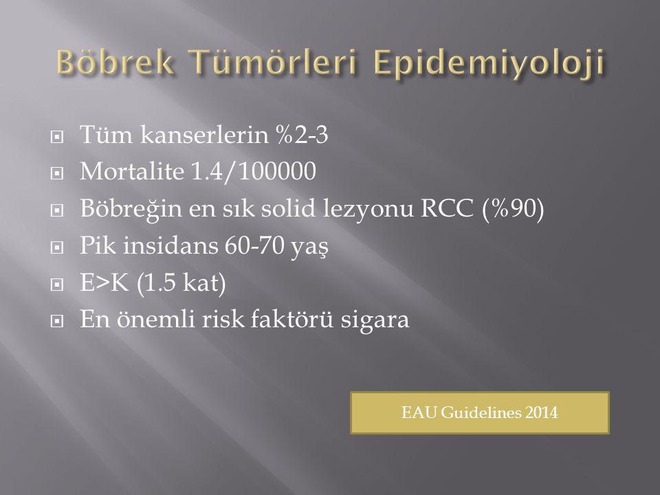 Böbrek Tümörleri Epidemiyoloji