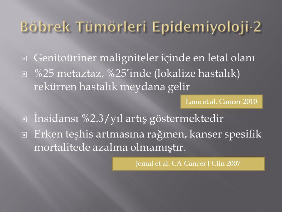 Böbrek Tümörleri Epidemiyoloji-2