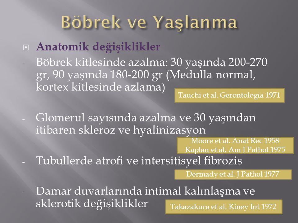 Böbrek ve Yaşlanma Anatomik değişiklikler