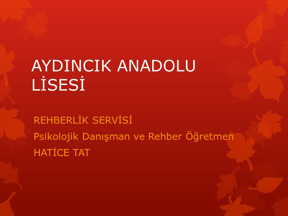 AYDINCIK ANADOLU LİSESİ