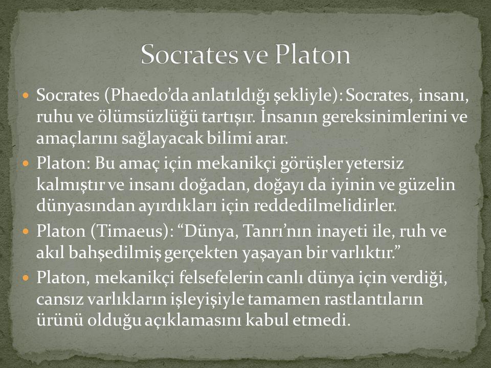 Socrates ve Platon