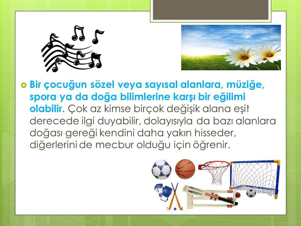 Bir çocuğun sözel veya sayısal alanlara, müziğe, spora ya da doğa bilimlerine karşı bir eğilimi olabilir.