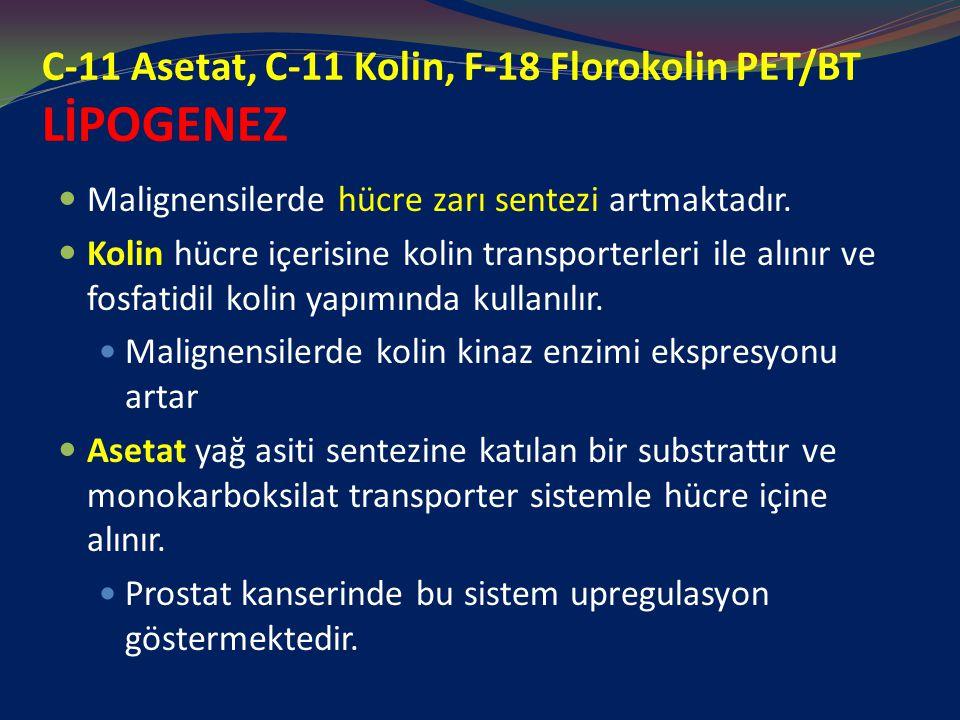 C-11 Asetat, C-11 Kolin, F-18 Florokolin PET/BT LİPOGENEZ