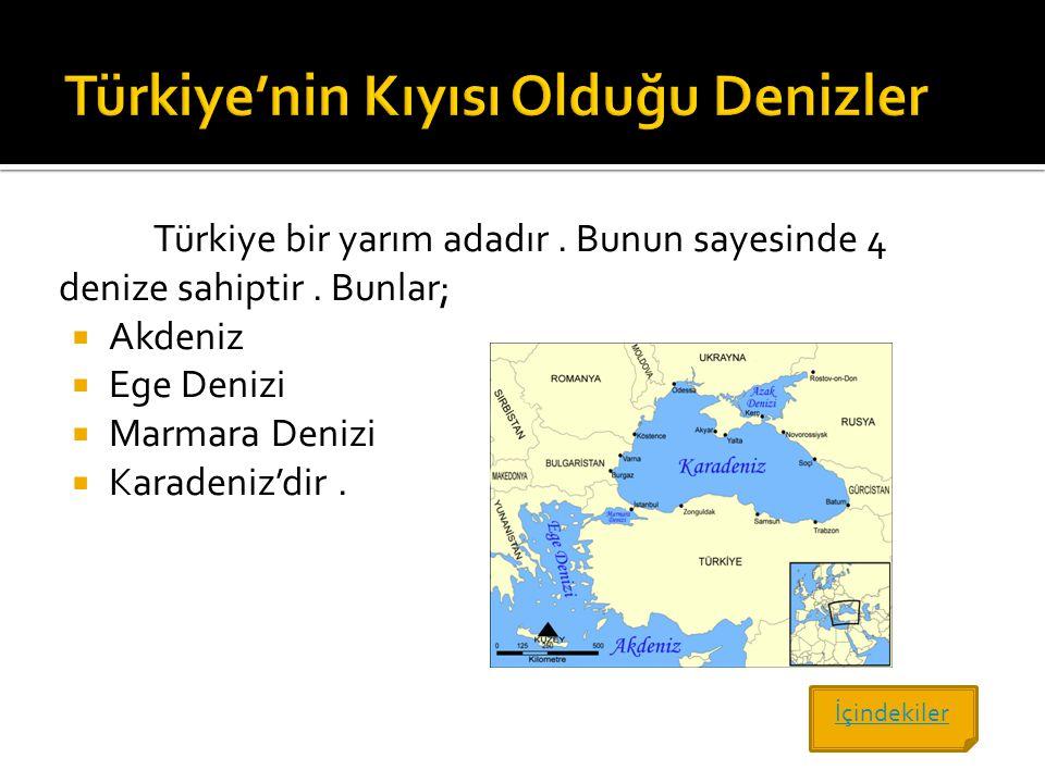 Türkiye'nin Kıyısı Olduğu Denizler
