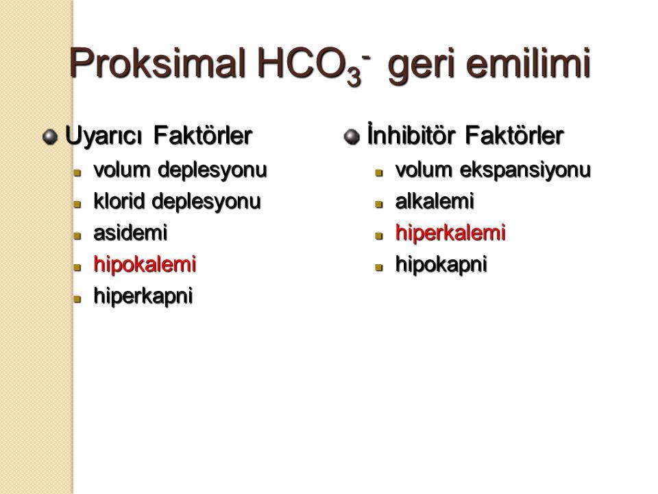 Proksimal HCO3- geri emilimi